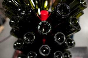 wineUdesign-bottle-flower