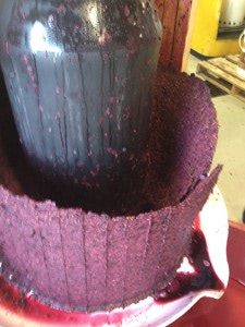wineUdesign-crush-grapes